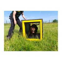 Marmax -  Recycled Plastic Dog Agility Cube 500